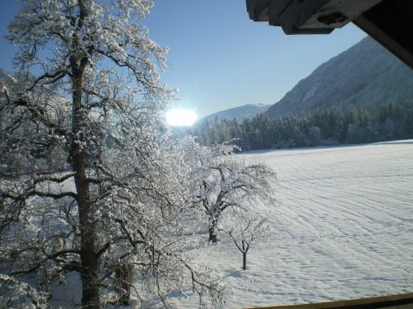 Winter - © www.joggelehof.at